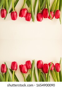 Spring tulips on paper background