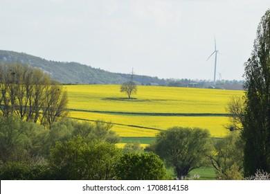 spring valley in the Eifel