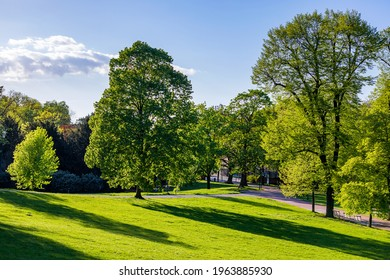 Spring view in Letna Park, Prague, Czech Republic. Spring in Prague (Praha), beautiful Letna park (Letenske sady) in sunlight, sunny landscape, popular tourist destination, Prague, Czech Republic - Shutterstock ID 1963885930