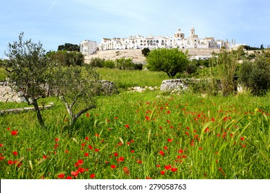 Spring view of the Locorotondo town in Puglia (southern Italy) with poppies field on the foreground. Locorotondo is one of the famous tourist attraction in Apulia.