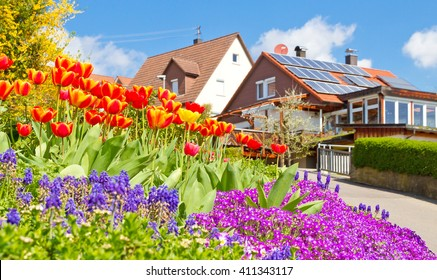 Spring in the village