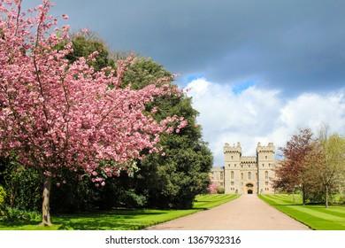 Spring in windsor castle, Windsor, Guildhall. March, 2014