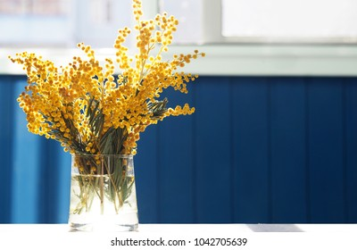 Spring yellow mimosa flowers. Acacia dealbata, silver wattle or mimosa in glass vase on table close-up, against background of the window. Flower spring background, 8 March, Easter. Sun rays, backlight