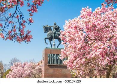 Spring in Zagreb, Croatia, tree blossom and king Tomislav statue in park