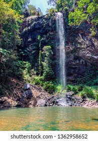 """""""Springbrook National Park, Mountain in Queensland"""" The park is part of the Gondwana Rainforest, home to wildlife including koalas and rare birds. Dramatic Purling Brook Falls can be viewed."""