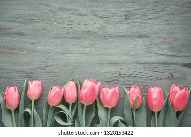 Springtime background with pink tulips on dark textured wooden background, copy-space