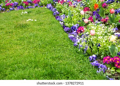 Springtime gardening background. French garden in spring. Colorful flowerbed in park with tulip, bellis, pansy, daisy, viola flowers and green vivid lawn. Diversity and order abstract concepts.