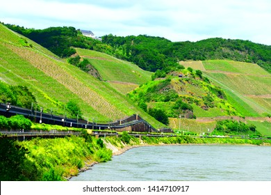 springtime in middle Rhine valley