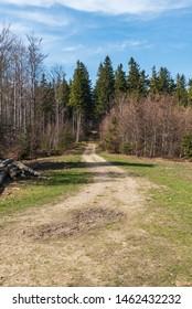 springtime Moravskoslezske Beskydy mountains above Moravka village in Czech republic with forest, trail and blue sky