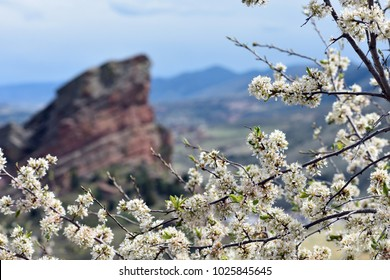 Springtime on the Front Range of the Colorado Rockies