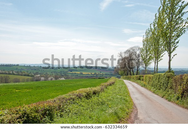 Springtime perspective down a country road in England.
