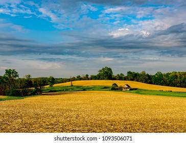 Springtime Rural Barn