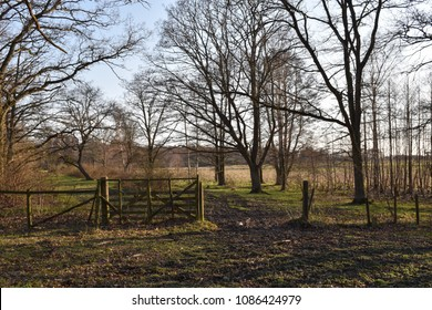 Springtime season in a pasture land with an old wooden gate at the nature reserve Beijershamn on the swedish island Oland