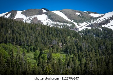 Springtime view of wilderness along Sonora Pass - Highway 108, California