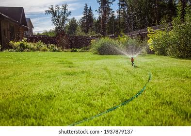 Sprinkler in garden watering the lawn. House exterior.