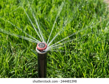 Sprinkler head spraying water over green grass.