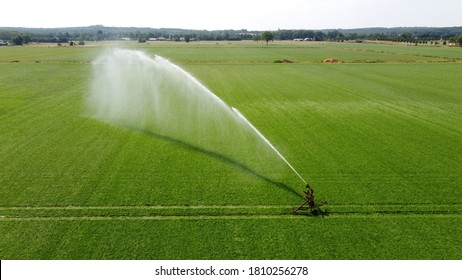 A sprinkler is irrigating a meadow on a hot dry day in the summer on the countryside in the Netherlands