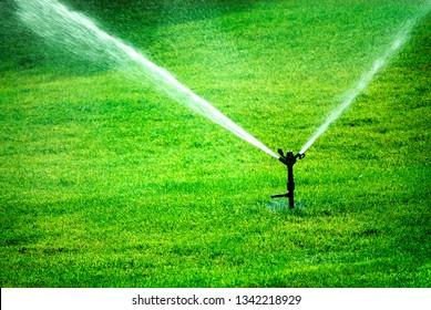 Sprinkler spraying water on lush green grass