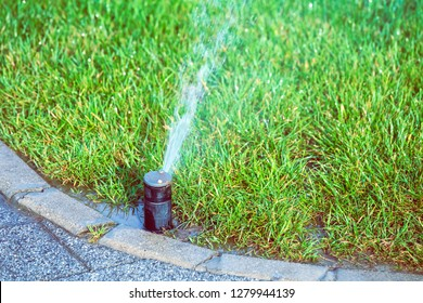 Sprinkler system work in lawn,  tosses water in the air through its water nozzle.