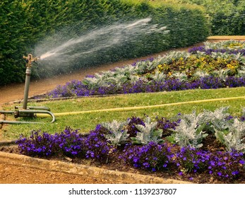 Sprinkler watering formal garden