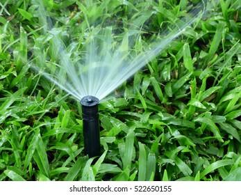 Sprinkler watering grass lawn in garden