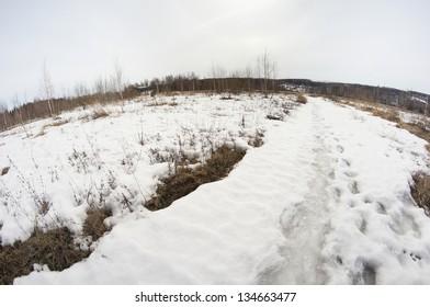 Sprint landscape