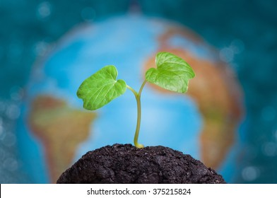 A sprout grows in soil. Our planet Earth is on background.