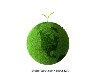 sprout on the green globe