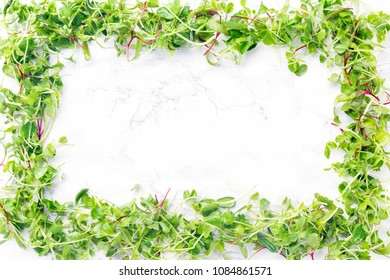 Sprouted baby greens frame. Superfood snack concept. Horizontal