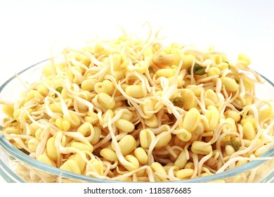 Sprouted beans on a white background. National Asian cuisine, preparation for salad, vegetarianism or raw food. Food background.