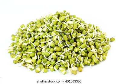 Sprouted mung beans or green gram beans in white background