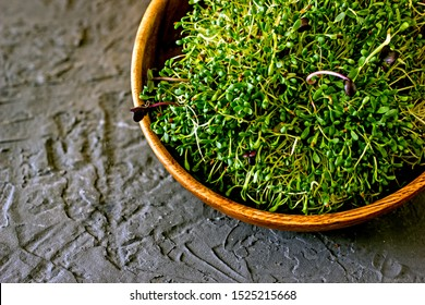 Sprouts are live food, sprouted seeds of broccoli, sunflower, wheat in a wooden bowl on a dark table. Live organic food concept, save the space