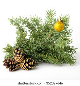 spruce branch of fir cones New Year holiday deputyanch