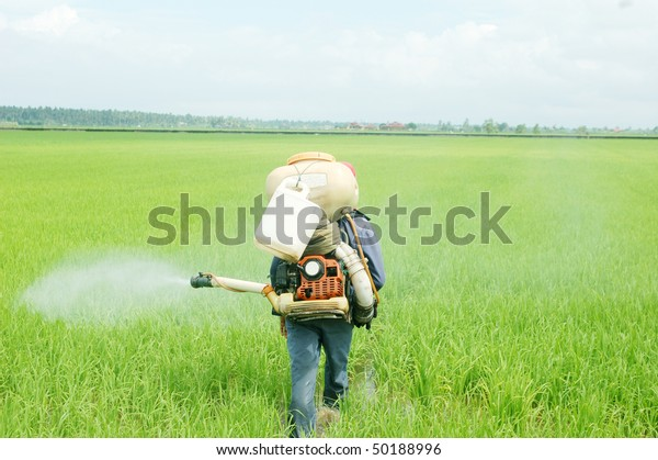 Sprying pesticides among the crop