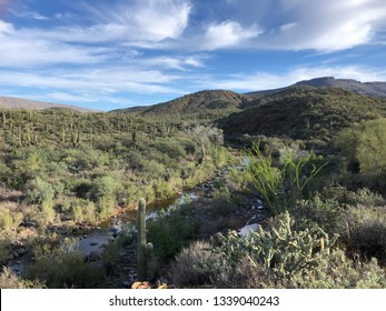 Spurr Cross Conservation Area (Cave Creek, AZ)