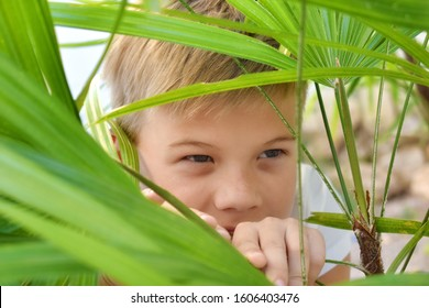 To spy and eavesdrop. Spy kids. Child hiding behind trees. Active games in the fresh air. A small child detective.
