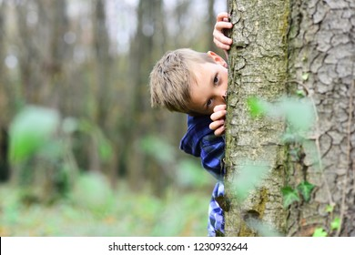 Spying is exciting. Small spy. Small child hide behind tree in forest. Small boy play guessing game. I spy with my little eye.