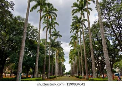 Square at Belo Horizonte city, Minas Gerais, Brazil