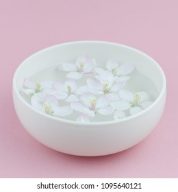 Square Close up of white spring blossoming apple tree flowers floating in aroma bowl of water. Spa and wellness concept