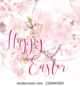 Square Easter background with pretty pink blossom, and 'Happy Easter' quote. Perfect for Easter Social Media campaigns.