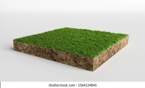 Square of green grass field over white background, 3D Illustration