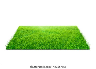 Square of green grass field over white background