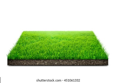 Square of green grass field over white background - Shutterstock ID 451061332
