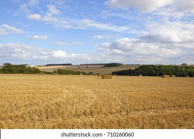 square hay bales at harvest time in a golden stubble field with hills and hedgerows under a blue summer sky in the yorkshire wolds - Shutterstock ID 710260060
