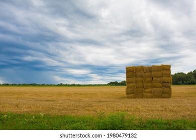 Square haystacks in a square arrangement on the north east Italian wetlands near Marina Julia, Friuli-Venezia Giulia