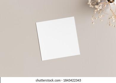 Square invitation card mockup with gypsophila.
