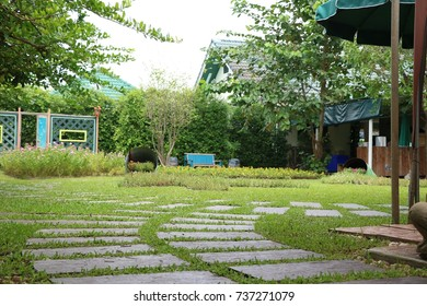 Square stone pathway on the lawn in garden.