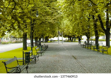 Square, trees, and peace in Visegrád, Hungary.