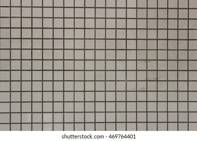 Square white tiles for floor and wall