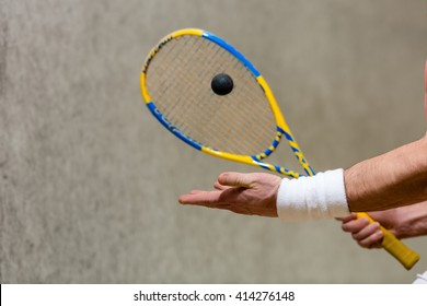 Squash racket and one ball closeup in man's hands. Sportsman or athlete playing squash game on court.